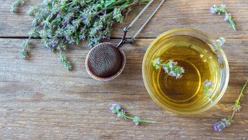 Husten stillen: Heilpflanzen sind erste Wahl